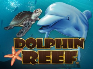 dolphin-reef-slots-game